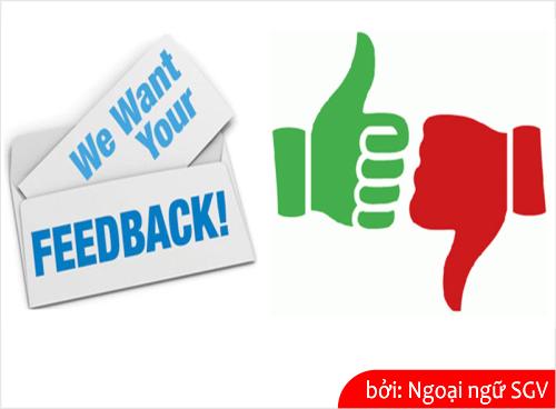 feedback la gi