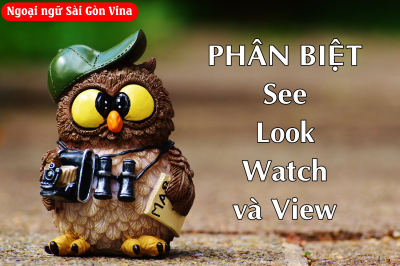 Sài Gòn Vina, Phân biệt SEE, LOOK, WATCH và VIEW