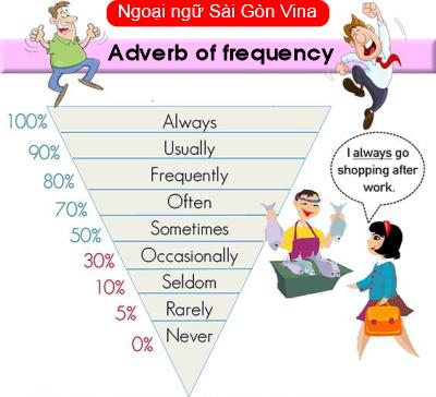 Sài Gòn Vina, Adverb of frequency - Trạng ngữ chỉ tần suất