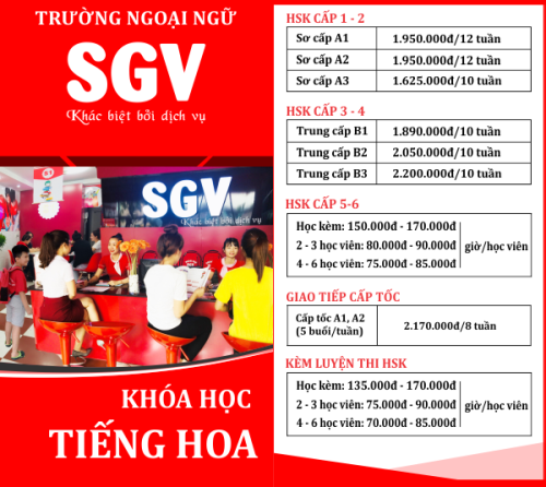 SGV, tong qua chuong trinh hoc tieng hoa saigon vina