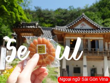 SGV, Đoạn văn tiếng Hàn về chuyến du lịch