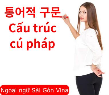 Sài Gòn Vina, Cấu trúc cú pháp tiếng Hàn