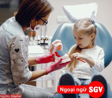 SGV, Dentine là gì?