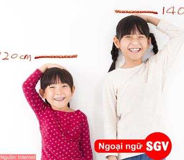 SGV, Từ vựng tiếng Trung miêu tả ngoại hình