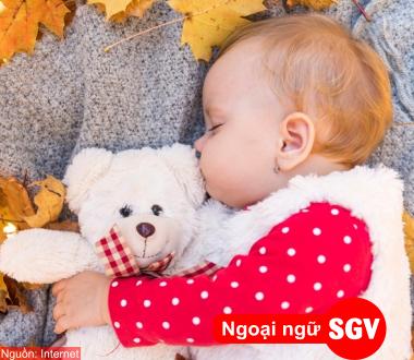 SGV, Danh từ giống trung trong tiếng Nga