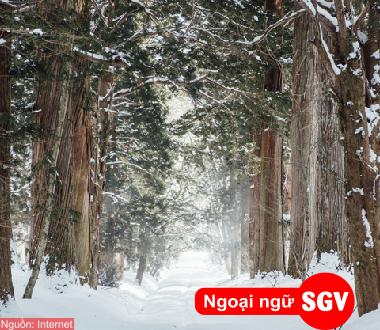 SGV, Từ vựng tiếng Nhật Bài 12 sách Minano Nihongo I