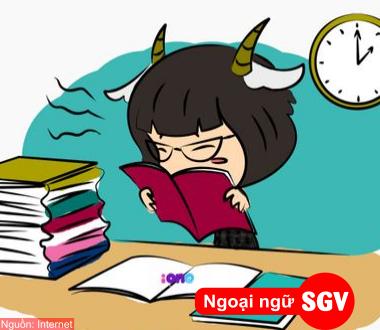 SGV, Từ Hán có trong tiếng Việt nhưng không có trong tiếng Nhật
