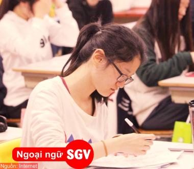 SGV, Du học nghề Hàn Quốc visa D4-6