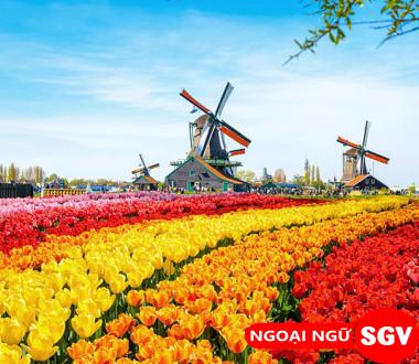 Lễ hội hoa Tulip ở Hà Lan, ngoại ngữ Sài Gòn Vina.