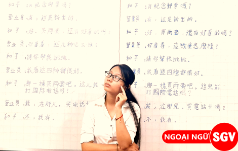 Sài Gòn Vina, Tiếng Trung phồn thể và giản thể là gì